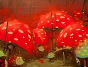 Leinwand Pilze